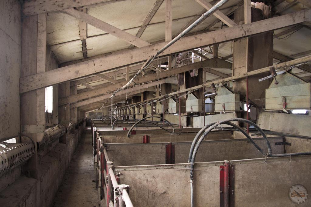 The pig farm by adurbex