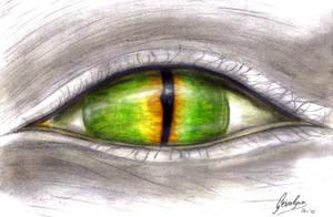 I show you my soul by Gewalgon