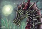 Holy Dragonnight