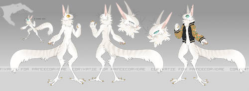 [c] Grem2 Ref for PrinceCorvidae by corycatte