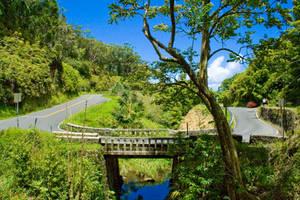 The Hana Highway by sean335