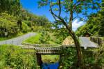 The Hana Highway