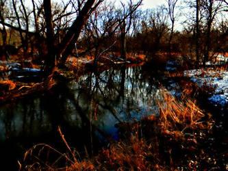 Cold Reflection by TropicalxLondon