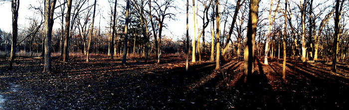 Wood Dale Panorama: 02 by TropicalxLondon