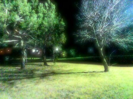 Sacred Serenity by baf1