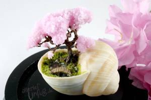Mini Garden with Sakura Tree