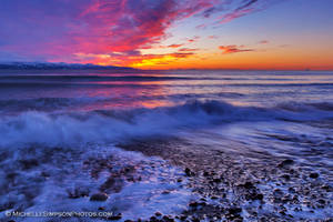 A Rush of Color by MSimpsonPhotos