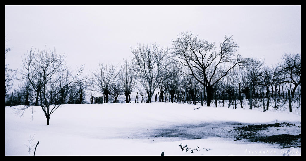 Winter time by AlexBlood