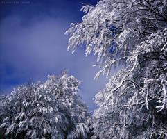 Winter power by AlexBlood
