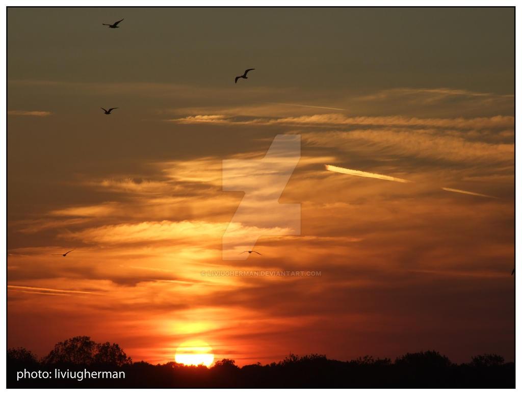 apus de soare by liviugherman