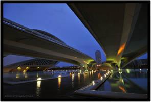 bridges by liviugherman