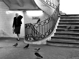 The Birds II by pariah87