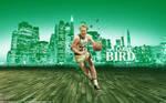 Larry Bird Wallpaper