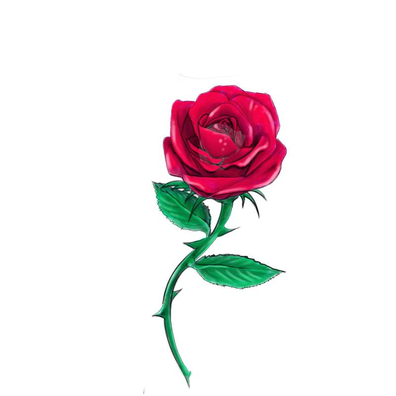 Red Rose By Daelyth On Deviantart