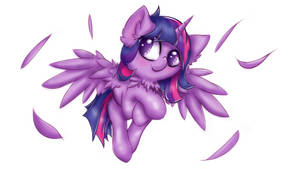 MLP Feathers