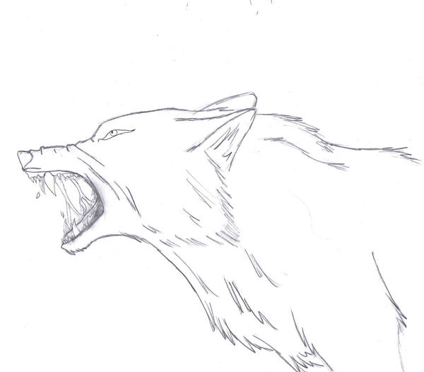 wolf rain coloring pages - photo#4