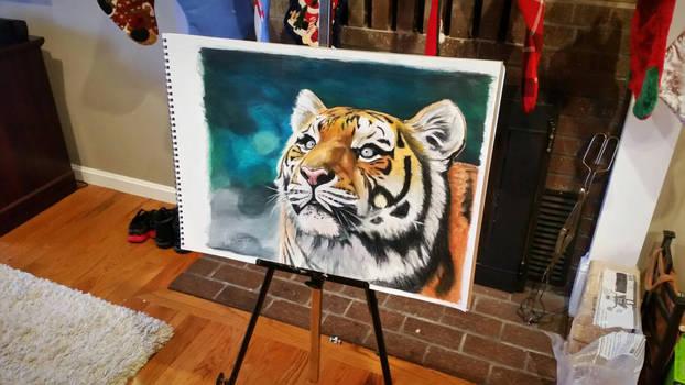 tiger in color pencil
