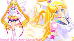 Manga eternal sailor moon wip