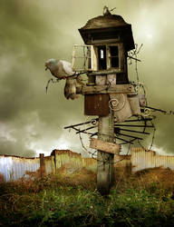 Bird House by MachineRoom