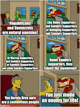 The Madness of Bernie Bros