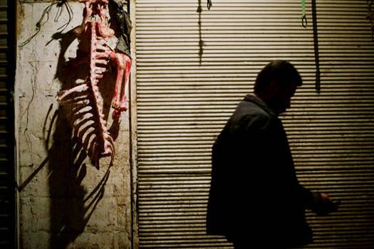 bones, flesh