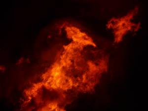 Fire 2 by wollibear