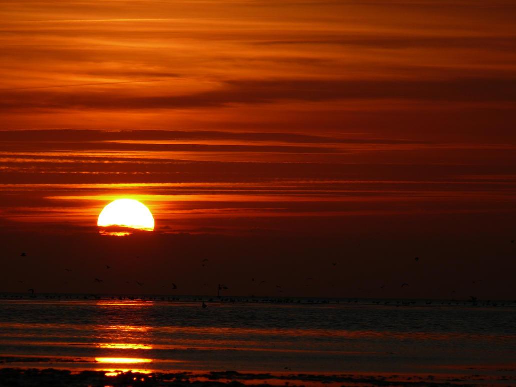 Sunset 1 by wollibear