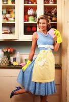 Housewife Tg Tf by Plurmp