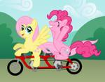Biking For a Cause