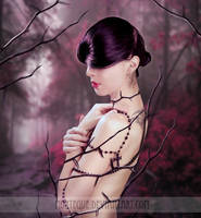 .:The Rose Among the Thorns:. by Morteque