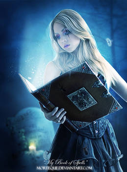 .:My Book of Spells:.