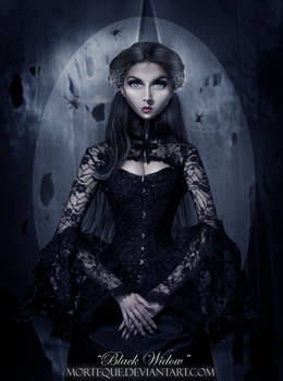 .:Black Widow:.