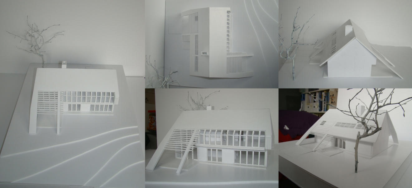 Contemporary Polish House - Oravski house model by bulaw