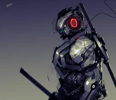 Ninja from the future #2