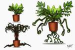 Plantoid