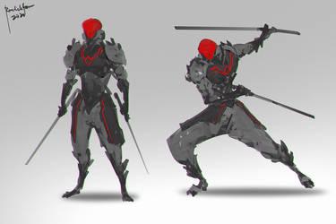 Ninja Z