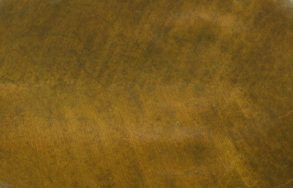 texture-brown rubber tree leaf by scribblin on DeviantArt  texture-brown r...