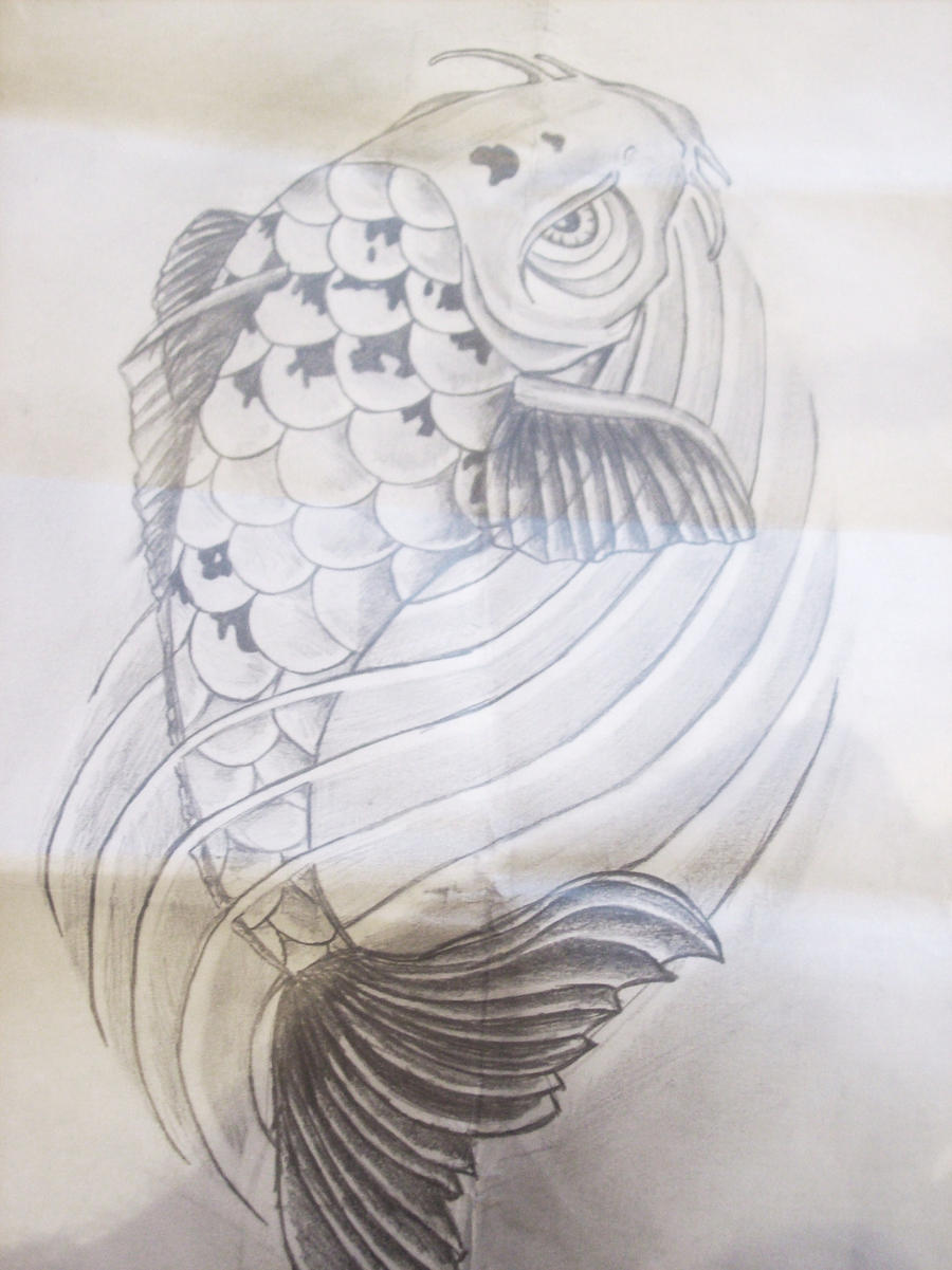 Koi carp tattoo by drewcarcrazy on deviantart for Koi carp art