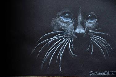 The dark animal by ssilverartist