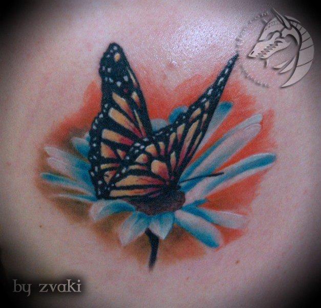 butterfly realism by Anubis-osijek
