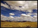 Peruvian high plains