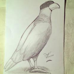 day 9 bigger bird by denmander