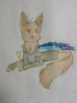 Balthazar as a cat