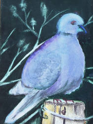 Mourning Dove Painting 2013 Marsha Woods