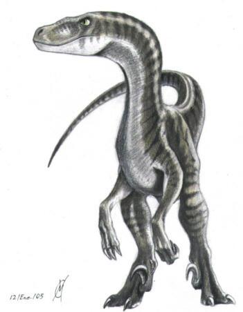 Sturmblut's Profile Picture