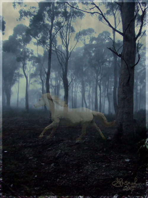 The_Ghost_Horse_by_kailorien.jpg