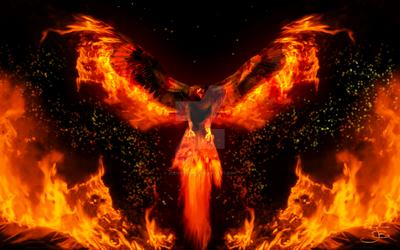 Phoenix Rising by jodipheonix