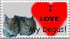 I Love My Degus Stamp by SilverNight1079