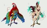 Bird adopts - 6 USD each - closed