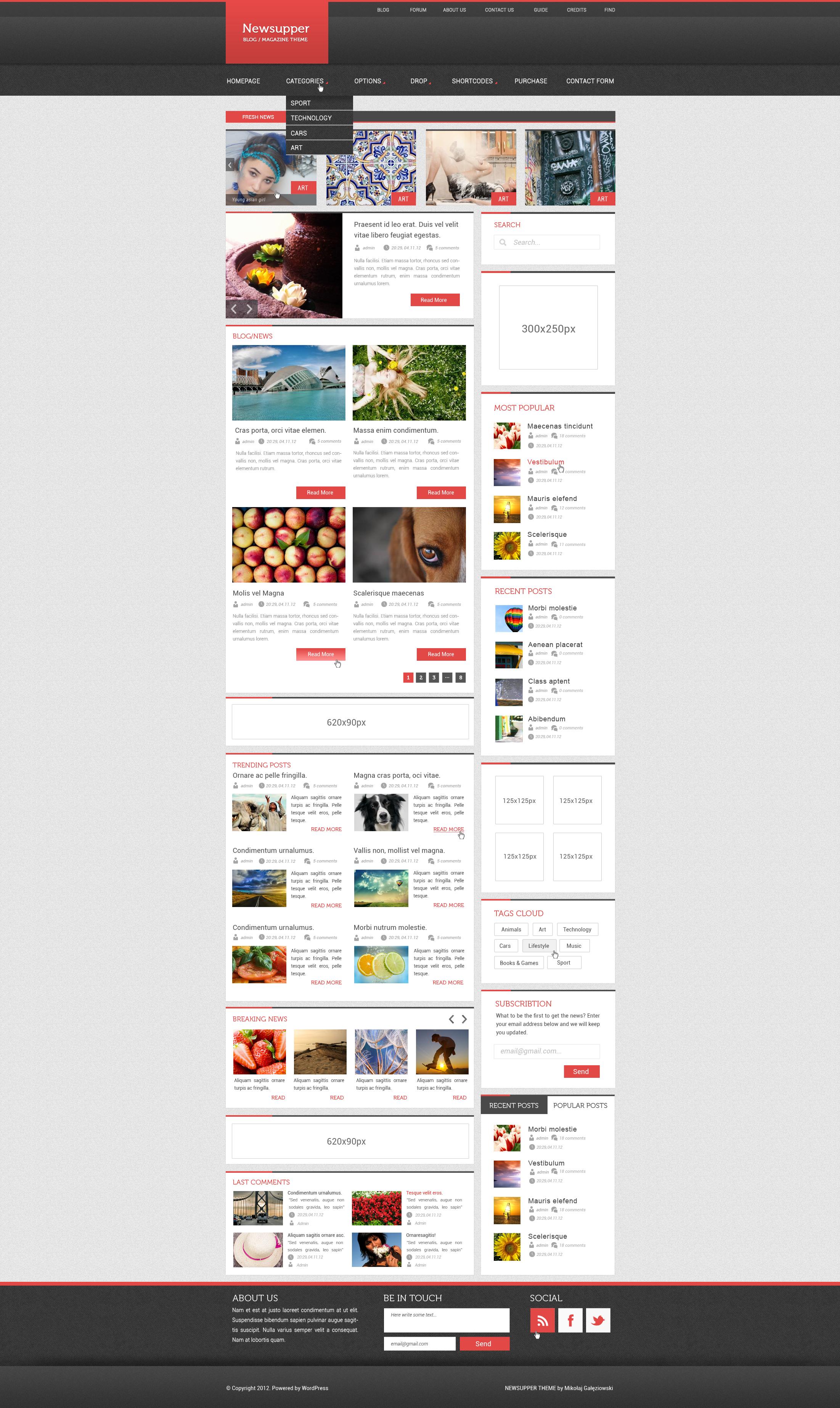 WordPress blog theme by Mikollaj